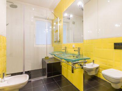 bathroom-with-black-floor-GLASS-COMPANY